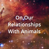 On Our Relationships with Animals